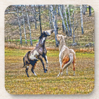 Two Playful Pinto Paint Horses Equine Art Design Coaster