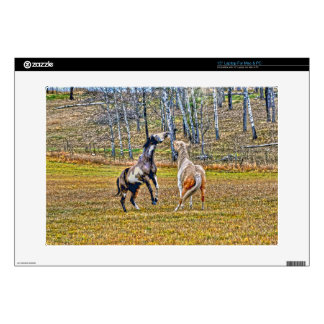 """Two Playful Pinto Paint Horses Equine Art Design Decal For 15"""" Laptop"""