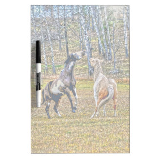 Two Playful Pinto Paint Horses Equine Art Design Dry-Erase Boards