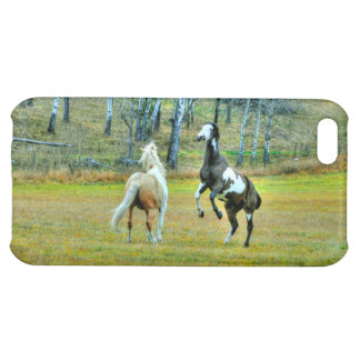 Two Playful Pinto Paint Horses Equine Art Design Case For iPhone 5C