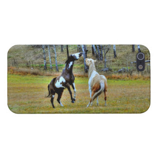 Two Playful Pinto Paint Horses Equine Art Design iPhone 5/5S Cases