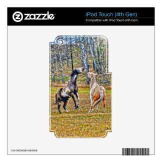 Two Playful Pinto Paint Horses Equine Art Design iPod Touch 4G Skins