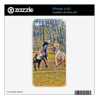 Two Playful Pinto Paint Horses Equine Art Design Skin For iPhone 4S