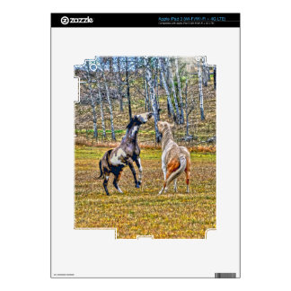 Two Playful Pinto Paint Horses Equine Art Design Skins For iPad 3