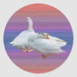 two playful white geese sticker