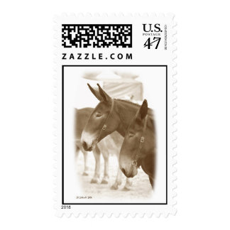Two Points of View Postage