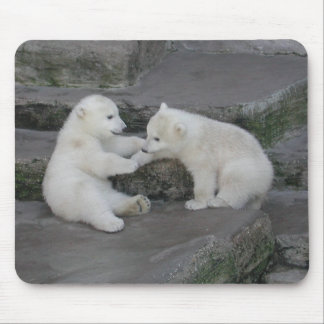 Two Polar bear cubs Mouse Pad