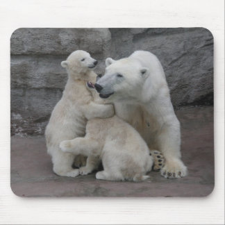 Two Polar bear cubs with mother Mousepads