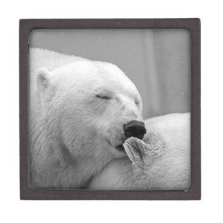 Two Polar Bears Giftbox Gift Box