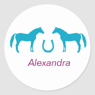 Two ponies and a horseshoe. classic round sticker