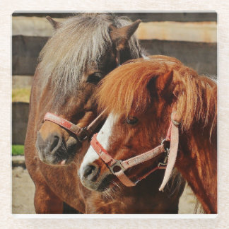 Two Ponies in Barn Yard Glass Coaster