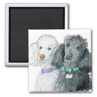 Two Poodles Magnet Magnet
