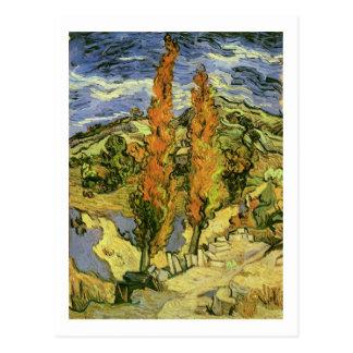 Two Poplars on a Road, Vincent van Gogh Postcard