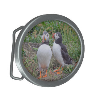Two Puffins Buckle Oval Belt Buckle