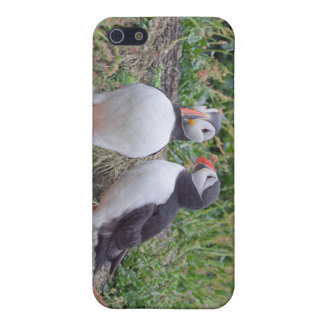 Two Puffins from Skomer Island iPhone SE/5/5s Case