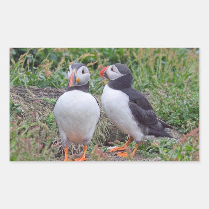 Two Puffins from Skomer Island Rectangular Sticker