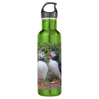 Two Puffins Stainless Steel Water Bottle