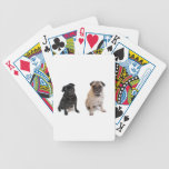 Two pugs one beige one black bicycle poker cards