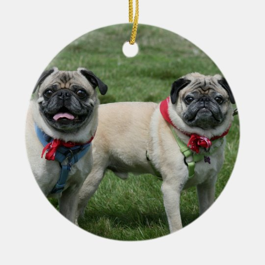 Two pugs ornament