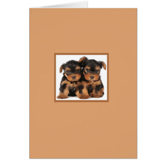 Two Puppies Card