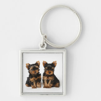 Two puppies Silver-Colored square keychain