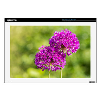 """Two purple flowers of ornamental onions together decals for 17"""" laptops"""