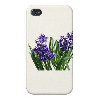 Two Purple Hyacinths Cases For iPhone 4