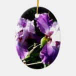 Two Purple Iris Flowers Ceramic Ornament