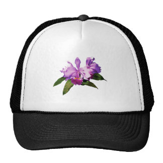 Two Purple Orchids Hats