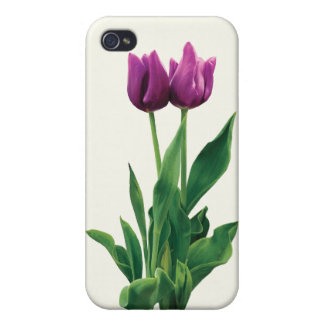 Two Purple Tulips Case For iPhone 4
