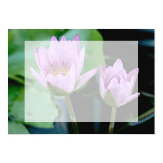 two purple water lilies card