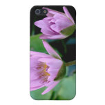 two purple water lilies iPhone 5 cases