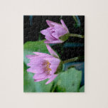 two purple water lilies jigsaw puzzle