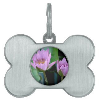 two purple water lilies pet ID tags