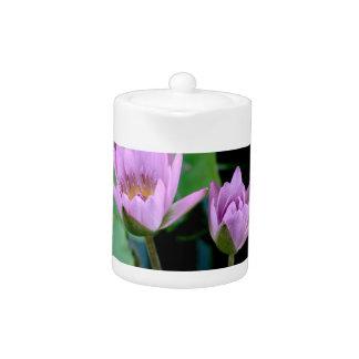 two purple water lilies teapot