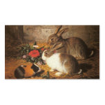 Two Rabbits and a Guinea Pig Business Card