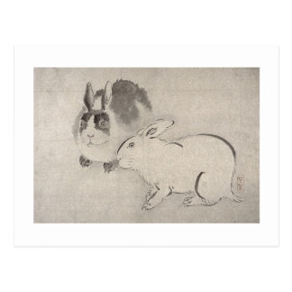 Two Rabbits in Black and White Postcard