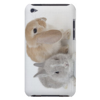 Two rabbits.Netherland Dwarf and Holland Lop. iPod Case-Mate Cases