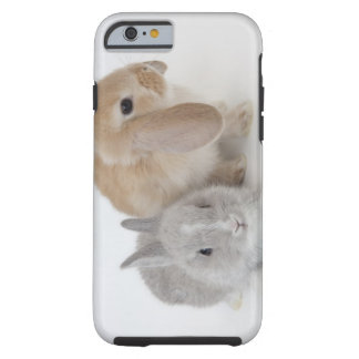 Two rabbits.Netherland Dwarf and Holland Lop. Tough iPhone 6 Case