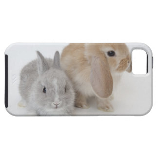 Two rabbits.Netherland Dwarf and Holland Lop. iPhone SE/5/5s Case