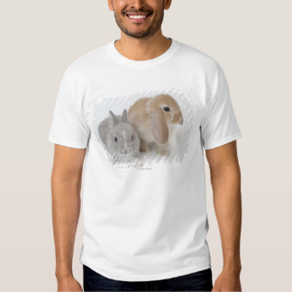 Two rabbits.Netherland Dwarf and Holland Lop. Shirts