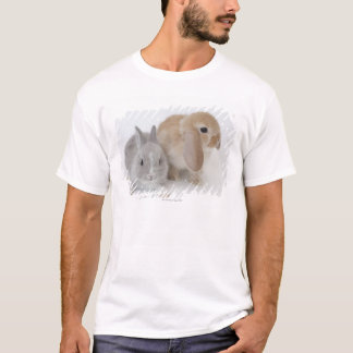 Two rabbits.Netherland Dwarf and Holland Lop. T-Shirt