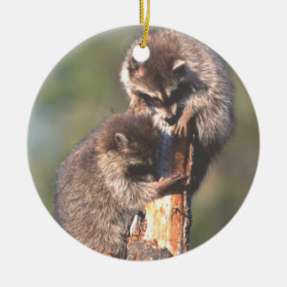 Two Racoons on Stump Ornament Christmas Tree Ornament
