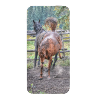 Two Ranch Horses Playing & Bucking Equine Photo iPhone 5 Pouch