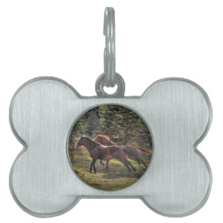Two Ranch Horses Running in Forest Pet Name Tag