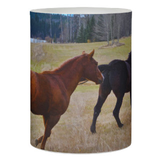 Two Ranch Stallions Running Free Flameless Candle