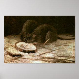 Two Rats Van Gogh Fine Art Poster