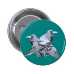 Two Ravens teal Gifts Pinback Buttons