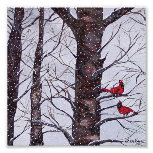 Two Red Birds In Winter Poster