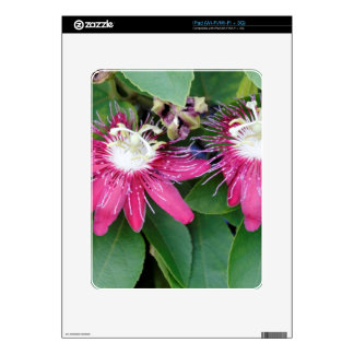 Two Red Passion Flowers Closeup Outdoors in Nature iPad Skins